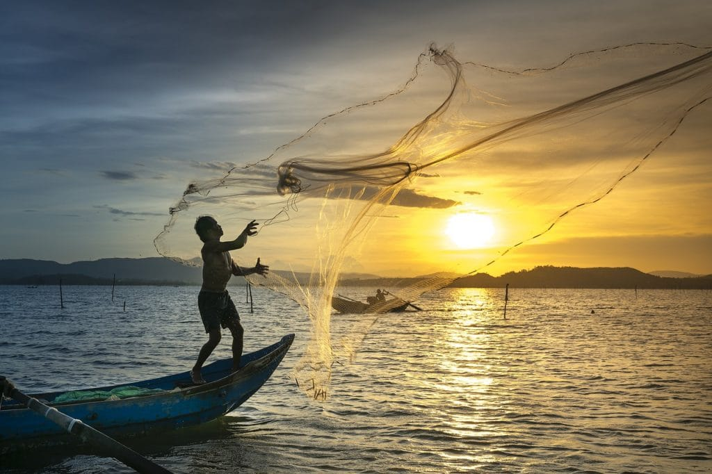 castnet sunset how to fishing for beginners