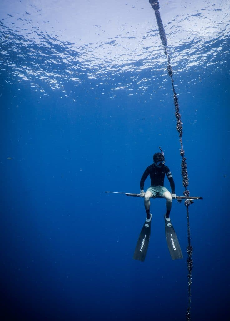 snorkel spearfishing underwater how to fishing for beginners